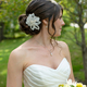1395016553_small_thumb_nature-inspired-maine-wedding-6