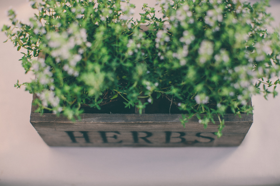 Herb Centerpieces
