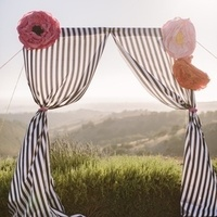 Striped Ceremony Backdrop