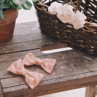 Pink Striped Bow Ties