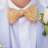 Yellow and Blue Preppy Bow Tie