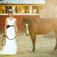 1396398536_small_thumb_offbeat-ranch-wedding-21