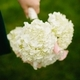 1396639127 small thumb relaxed illinois backyard wedding 14