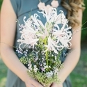 1396893553 thumb photo preview shabby chic oklahoma wedding 4