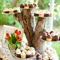 Tree Branch Cupcake Holder