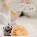 1397754103 thumb photo preview vintage romantic california wedding 6