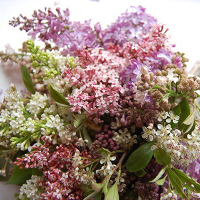 1397780015_photo_slider_lilac-bouquet