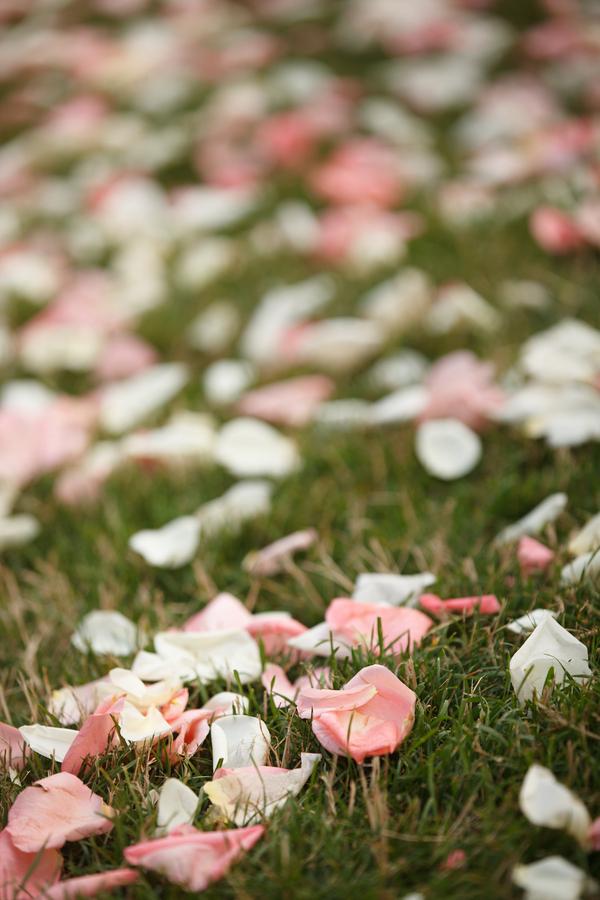 Petals Down the Aisle