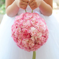 Pink Pomander