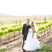 Spring Vineyard Wedding