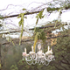 1399909347 small thumb romantic california vineyard wedding 27