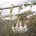 1399909348 thumb romantic california vineyard wedding 27