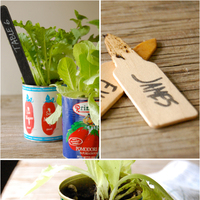 A Kitschy, Eco-Friendly Table Setting