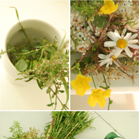 DIY: How to Make a Wildflower Bouquet