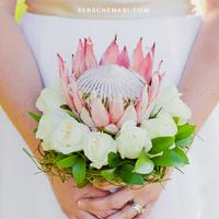 Protea Biedermeier Bouquet
