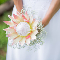 Protea and Baby's Breath Bouquet