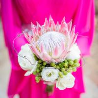 Modern Protea Bouquet