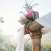 Protea Altar Flowers