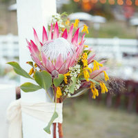 Pink Protea Altar Decor