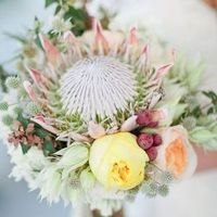 Lovely Protea Bouquet