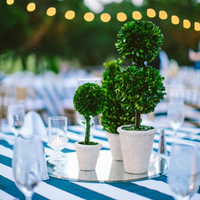 Topiary Centerpieces