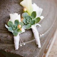 Classic Succulent Boutonnieres