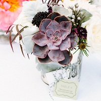 Mini Centerpiece with Succulent