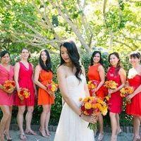 Punchy Color Dresses