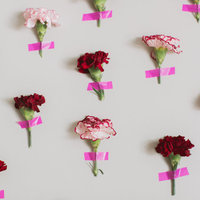 DIY: Carnation Flower Wall