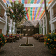 1405134462_small_thumb_ballesteros_parry_jorge_santiago_photography_oaxacaweddingphotographerhotelazulmexicoas202820929_low