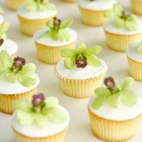 Declicious Vanilla Cupcakes