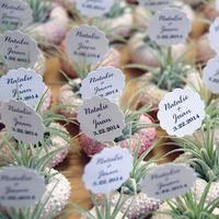 air plant wedding favors - robincharlotte - los angeles