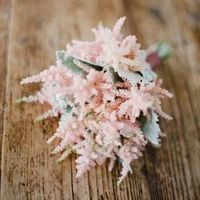 Astilbe and Dusty Miller