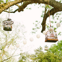 Hanging Birdcages