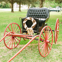 Festive Chariot