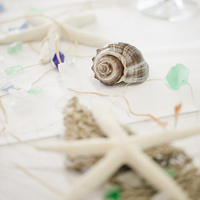 Festive Beach Tablescapes