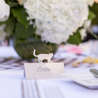 Animal Inspired Place Cards