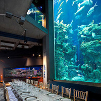 South Carolina Aquarium - Reception