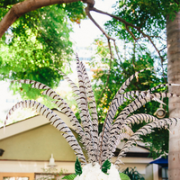 11 Ways to Decorate with Feathers