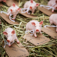 Farm Animal Escort Cards