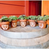 Painted Planter Succulent Favors
