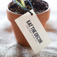 Edible Plant Favors