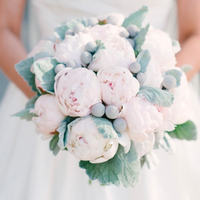 Pink Peonies and Silver Brunia