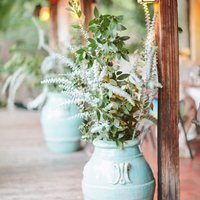 Potted Greenery Decor