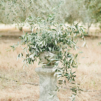 Tuscan Greenery Ceremony Decor