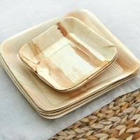 Palm leaf Plates-leaftrend