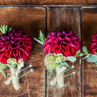 Dark Red Dahlia Boutonnieres