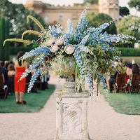 Delphinium Reception Flowers