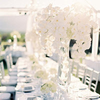 Glam White Orchid Centerpieces