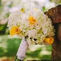 1415633393 thumb photo preview pantaleo haverkamp audra starr photography 20140503sarahdavewedding076 low